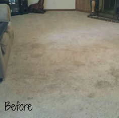 Clean Pros Carpet Cleaning Cleanknox On Pinterest