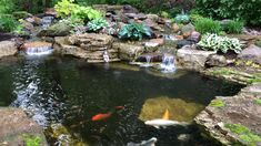 Waterfall Landscaping, Pond Waterfall, Pond Landscaping, Fish Ponds Backyard, Backyard Water Feature, Outdoor Fish Ponds, Indoor Pond, Swimming Pool Pond, Patio Pond