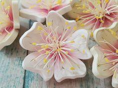 quilling flowers #quilling #paperquilling #quillingflowers #quillingart #papercrafts #paperart #paperflowers #handmade #공예 #종이감기 #종이감기공예 #페이퍼퀼링 #종이감기꽃 #종이공예 #종이꽃 #핸드메이드 #취미 #クイリング #ペーパークラフト #手作り