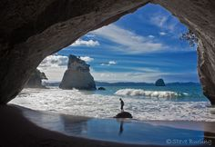 New Zealand - thought about going to study abroad!