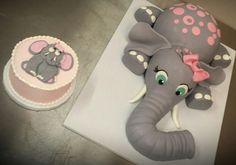 1st birthday and smash cake