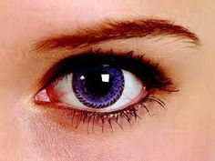 purple contacts