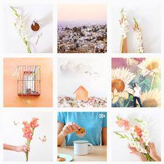 Cómo tener una galería de Instagram que encante Vsco, Photography Basics, Instagram Feed, Ideas Para, Digital Marketing, Photo Wall, Branding, Social Media, Cool Stuff