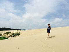 한국의 사막 자연의아름다움 태안 신두리해안사구 천연기념물 제 431