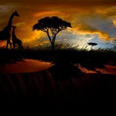 """""""Sunset Affection"""" - © Robert Weber -   http://500px.com/photo/5964903"""