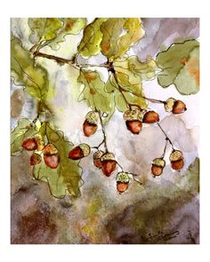 Acorns and oak Leaves Watercolor and Ink by Ginette Callaway