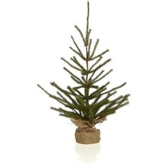 Crate & Barrel Pine Tree Small (40 CAD) ❤ liked on Polyvore featuring home, home decor, holiday decorations, christmas, xmas ornaments, christmas holiday decor, rustic ornaments, rustic home decor and christmas ornaments