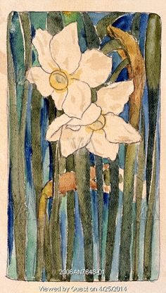 Design of two white daffodils, by Arthur Cameron. Britain, 20th century