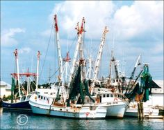 This picture of fishing trawlers was taken in Beaufort North Carolina. It is a few of the fishing boats that ply the coast of North Carolina.