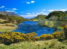 """Ross-shire is Scotland's wild frontier known as """"the last great wilderness of Europe"""" and is the most remote region of the UK."""