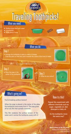 printed-c Traveling Toothpicks Science Experiment Looking for something fun and easy to do with your kids? Try our fun and simple science experiment! Primary Science, Science Curriculum, Kindergarten Science, Science Resources, Science Classroom, Science Activities, Science Projects, Science Ideas, Science Week