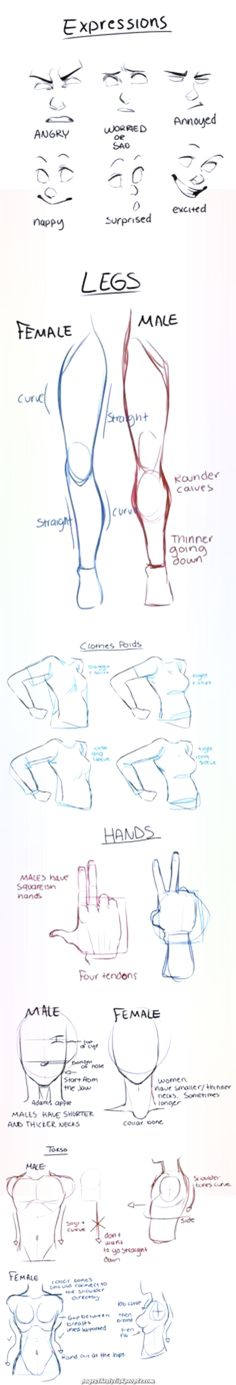 Learn To Draw People - The Female Body - Drawing On Demand Drawing Skills, Drawing Techniques, Drawing Tutorials, Drawing Tips, Art Tutorials, Drawing Sketches, Painting & Drawing, Drawing Ideas, Sketching Tips