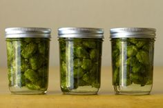 Hop infused oil