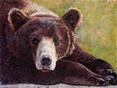 Beautiful Bear painting by Billie Colson