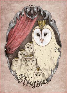 chouette effraie conte legende animal oiseau blanc foret