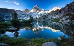 fotografie della natura - Cerca con Google