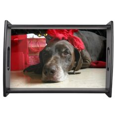 Christmas german shorthaired pointer service trays