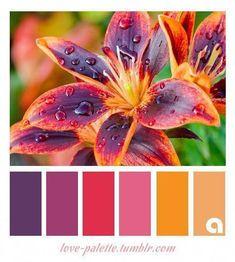 Colour scheme palette including three shades of purple, pink, yellow and cream. Color Schemes Colour Palettes, Colour Pallette, Color Combinations, Fall Color Schemes, Wie Zeichnet Man Manga, Diy Foto, Color Balance, Balance Design, Design Seeds