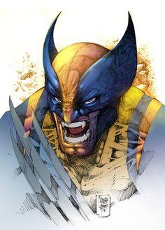 Wolverine by Marcio Abreu *