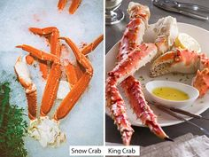 Difference between King Crab Legs and Snow Crab Legs (Snow Crab vs King Crab) Bake Crab Legs Recipe, King Crab Recipe, Lobster Recipes, Crab Recipes, Recipies, Easy Cooking, Cooking Recipes, Cooking Crab, Baked Crab Legs