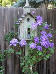 ❥ Beautiful clematis and white chapel birdhouse