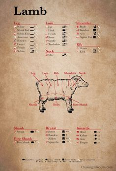 Lamb Cuts - Kitchen 101 Meet Cuts from Chasing Delicious
