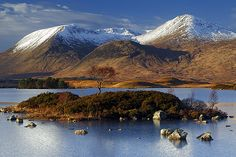 Island Tree on Lochan na h-Achlaise ~ Rannoch Moor, Scotland by Martin Sojka .. www.VisualEscap.es, via Flickr