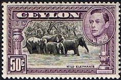 Ceylon 1938 King George VI Wild Elephants Fine Mint                    SG 394b Scott 286d    Other Asian and British Commonwealth Stamps HERE!