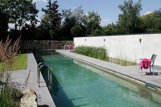 natural swimming pool lap lanes