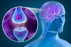 Transkutane Stimulation von Halsästen des N. vagus (tVNS) bei Clusterkopfschmerzen und Migräne – Schmerzklinik Kiel   Migräne-Klinik   Kopfschmerzzentrum