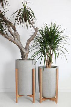 Cement Flower Pots, Concrete Planters, Indoor Flower Pots, Modern Planters, Wood Planters, Large Indoor Planters, Indoor Herbs, Hanging Planters, House Plants Decor