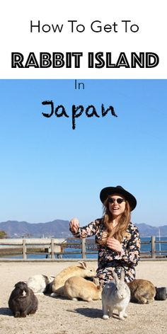 The Ultimate Guide To Travelling to Rabbit Island in Japan by train. Whether you're coming from the direction of Hiroshima or Osaka - here's everything you need to know to get to Rabbit Island.