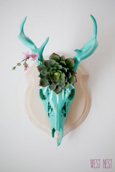 Bright teal blooming skull. Beautiful one of a kind wall mount. Deer skull with bright succulents decor. on Etsy, $178.00