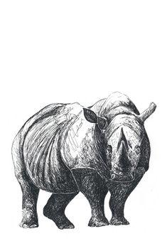 """""""Nashorn"""" auf RIDING RHINO #Nashorn #rhino #Illustration #AnimalArt #Zeichnung #Tier Lion Sculpture, Statue, Friends, Illustration, Art, Draw, Cards, Animals, Gifts"""
