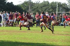 1st XV rugby