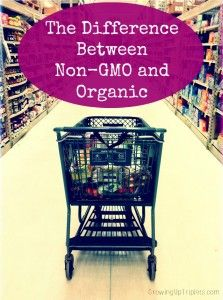 """The Difference Between Non-GMO and Organic. Sadly there is a difference. We not only need labeling for the commercially grown products, but to pick out the 100% USDA organic products from the """"organic"""" products"""