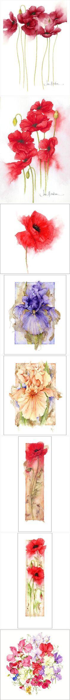 Jan Harbon's exquisite watercolours.