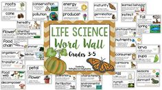 Life Science Word Wa