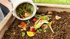 Composting may be one of the best things you can do for the planet. Learn how to get started with your own compost so your environmental impact is reduced.