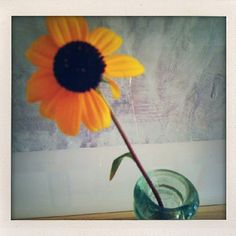 Flower, color photograph by Artspace Edition