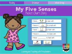 5 senses freebie