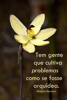 #problemáticos