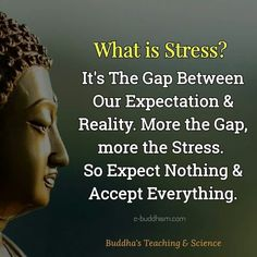 Best quotes positive buddha so true 60 ideas Wisdom Quotes, Quotes To Live By, Me Quotes, Motivational Quotes, Inspirational Quotes, Peace Of Mind Quotes, Yoga Quotes, People Quotes, Music Quotes