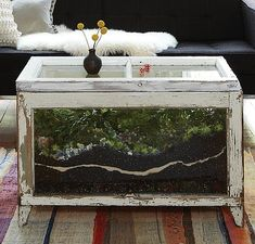 DIY Terrarium Coffee Table Close Up