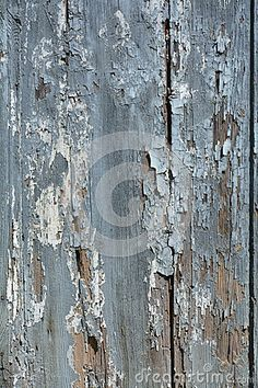 A wooden gray door texture for an abstract and grunge background.