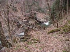 5. Narrow Gauge Trail, 3 Miles