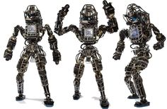 The strange robots of the US military. Atlas, the military's humanoid robot