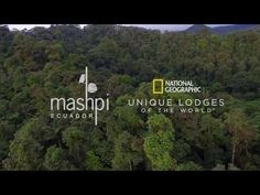 Mashpi Lodge, National Geographic Unique Lodges of the World in Ecuador Ecuador, Oasis, Natural Ecosystem, Beautiful Places To Travel, New Politics, Snorkeling, Luxury Travel, Trees To Plant, National Geographic