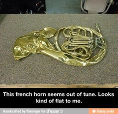 oh my goodness, very funny, but poor who ever owns this.their band teacher must hate them. <<<<<<<<<AS A FRENCH HORN PLAYER . Well, let's just say the band director would not be the only one Band Nerd, Band Geek Humor, Band Jokes, Music Jokes, Music Humor, Mellophone, Band Problems, Flute Problems, Marching Band Memes