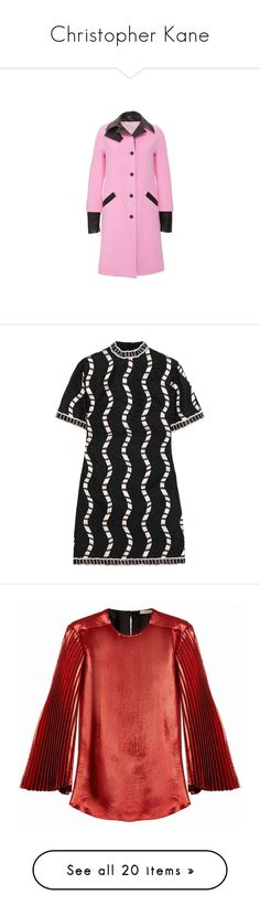 """Christopher Kane"" by sparkles-and-salamanders ❤ liked on Polyvore featuring pink slip, dresses, black, loose dress, silk organza dress, broderie dress, boxy dress, short embroidered dress, tops and blouses"